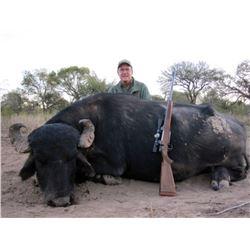 5-Day Argentina Water Buffalo Hunt