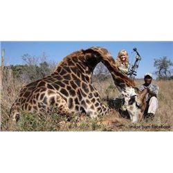 7-Day Giraffe Hunt for 2 Hunters