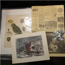 1779/1971 Pfizer Calendar & Weather Guide; Color Print by Ralph Avery; Color Print of a Rare Bird; &