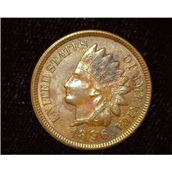 1896 Indian Head Cent, Brown Almost Unc.