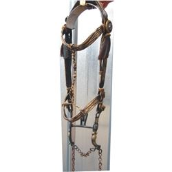 early hitched hair Deer Lodge headstall & silver mounted Santa Susanna bit