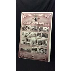 100 year National Forest Poster