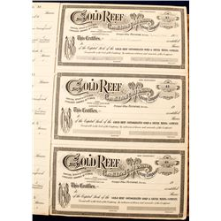 Gold Reef Consolidated Gold and Silver Mining Company Ledger Books