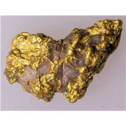 Bradshaw Mountains, Arizona Gold Nugget