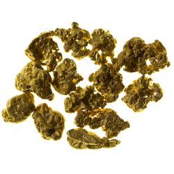 Nice Selection of Small Gold Nuggets from the El Paso Mountains.