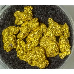 Ten Nevada Gold Nuggets