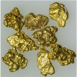Eight Nice Gold Nuggets from the Yukon Territory