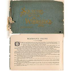 """Souvenir of Woodstock"""