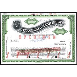Texas Pacific Land Trust, ca. 1930-60's Specimen Stock Certificate.