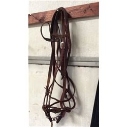 Leather Bridle with Unique Iron Bit