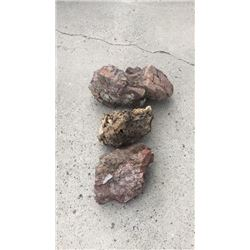3 Decorative Rocks
