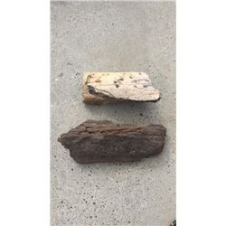 2 Petrified Wood Pieces
