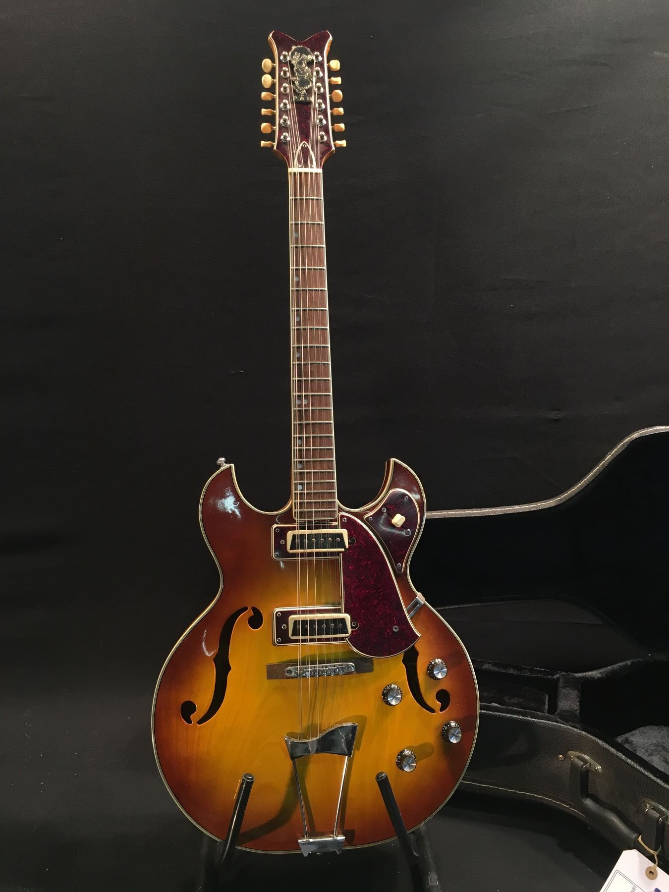 What vintage hollow body electric