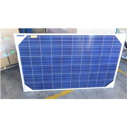 Qty 16 New Solar PV Panels: Renesolar JC255M-24/Bb, Clear