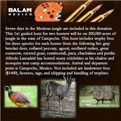 Balam Mexico
