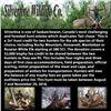Silvertine Wildlife