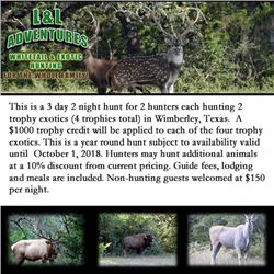 3 day 2 night hunt for 2 hunters each hunting 2 trophy exotics (4 trophies total) in Wimberley, Texa