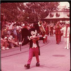 Collection of (165) Commercial Color Slides of Walt Disney World.
