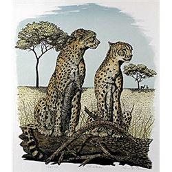 """Lithograph """"Cheetahs""""  Alan E. Carman"""