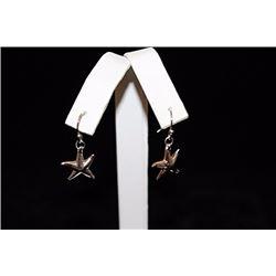 Lavish T & Co. Star Silver Earrings (8E)