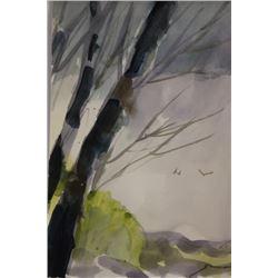 """BIRD WATCHING"" BY MICHAEL SCHOFIELD"