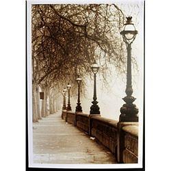 "Fine Art Print ""Morning Walk"" by Michael Trevillion"