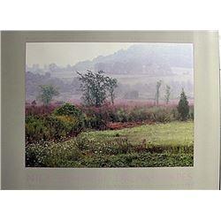 "Fine Art Print ""Morning Meadow"" by Nick Zungoli"