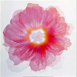 "Fine Art Print ""Fleur Rose"" by Robin"