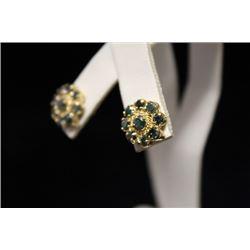 Lavish 14kt Gold Blue Diamond Earrings (24M)