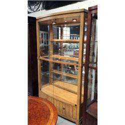 Exquisite Lighted Glass Curio