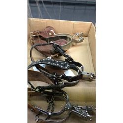 3 Pair Spurs With Straps