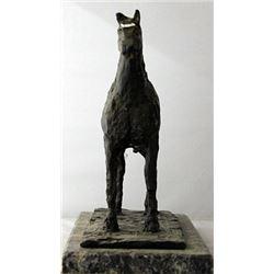 Stallion - Bronze Sculpture - Diego