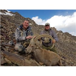 5 to 7 Day Hunt for Mid Asian Ibex for One or Two Hunters