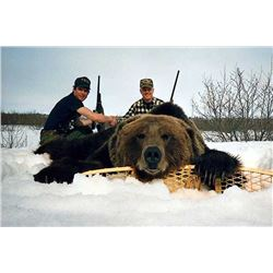 10 Day Cordova Brown Bear Hunt for One Hunter