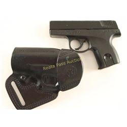 Smith & Wesson SW380 .380 ACP SN: RAB6604