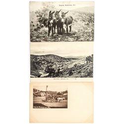 Three Manhattan, Nevada Postcards