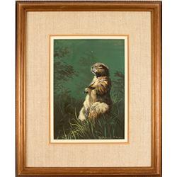 Little Critter by Judy Phearson