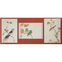 Chinese Old Print of Birds and Flowers Framed