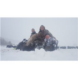 Montana Buffalo hunt with Steve Killorn of Buffalo Wallow Ranch