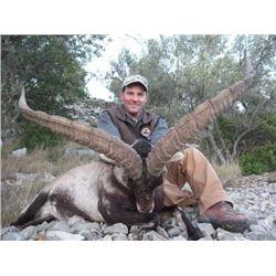 Spain hunt with Giuseppe Carrizosa