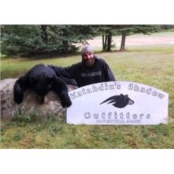 7 Day Maine Black Bear Hunt