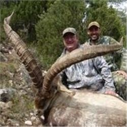 4 Day Mountain Hunt in Spain