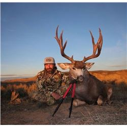 2019 Colorado Safari (Elk, Mule Deer, Pronghorn)