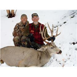 Trophy Mule Deer Hunt in British Columbia
