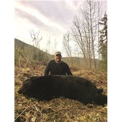 6 Day 2:1 Spring Skeena Black Bear Hunt