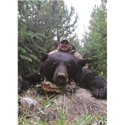 6 Day 1:1 Black Bear Hunt in the Cariboo
