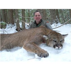 Wyoming Mountain Lion Hunt
