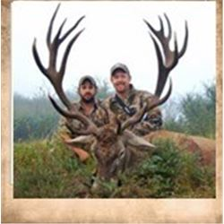 Argentina Big Game Hunt