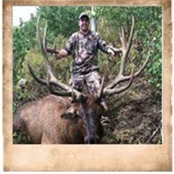 Wasatch Mtns, Bull Elk