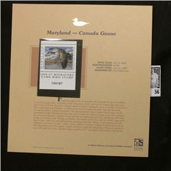 2006 Maryland Migratory Game Bird Plate Number Single $9.00 Stamp depicting Canada Goose, Pristine M